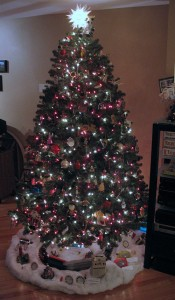 Tanner Christmas Tree 2010