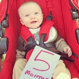 5 Months - May